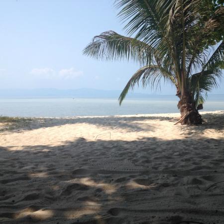 Charm Beach Resort: View from hammock