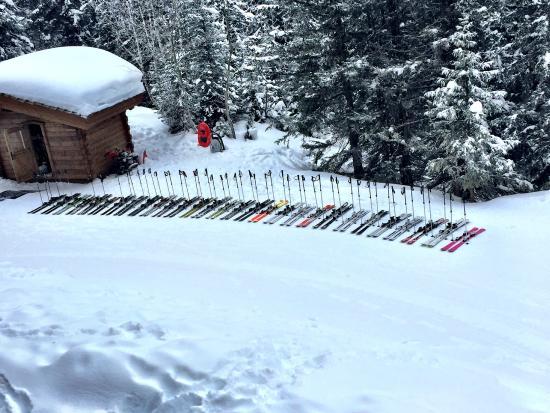 L'Apogée Couchevel : Ski in/ Ski out