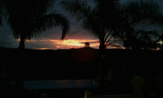 Rosendal Winery & Wellness Retreat: Beautiful sunsets from room