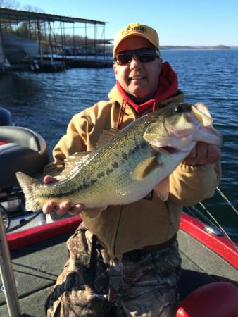 Table rock lake bass picture of branson guided fishing for Missouri bass fishing