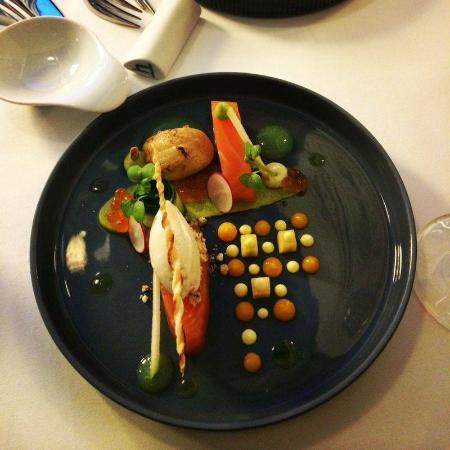 Yunico Japanese Fine Dining: Gebeizter Lachs Jakobsmuscheln Avocado