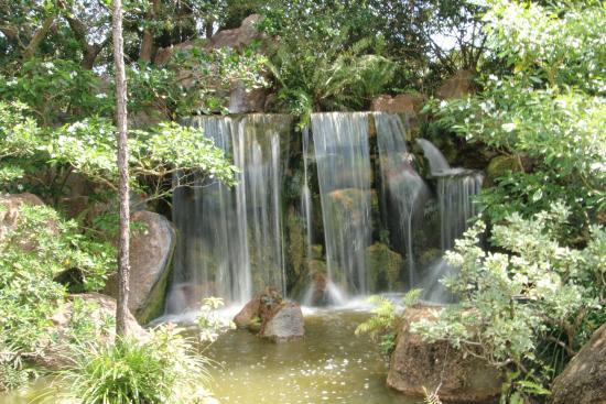 Waterfalls - Picture of Morikami Museum & Japanese Gardens, Delray ...