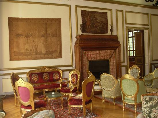 Chateau de Beguin : Le salon