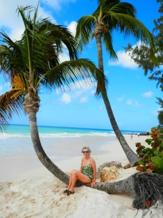 Turtle Beach By Elegant Hotels Tripadvisor