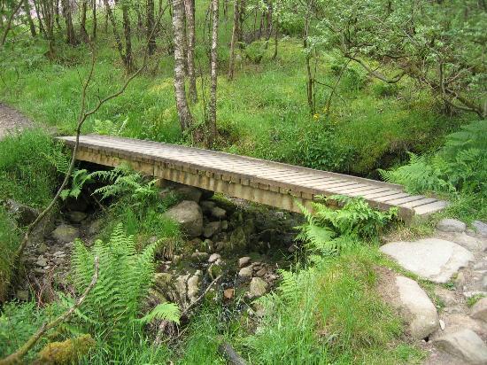 Ben Lomond: Walk across the bridge