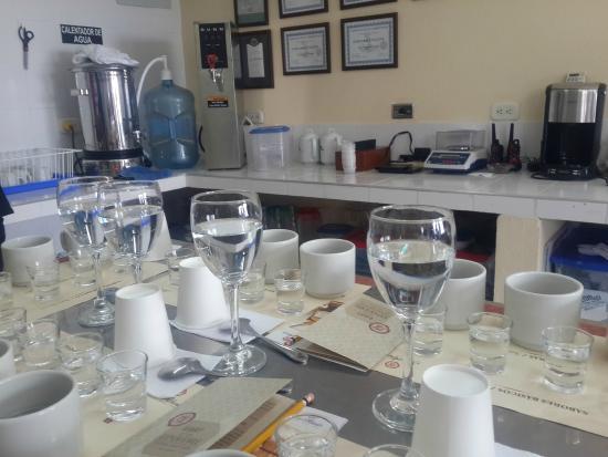 Cafe San Alberto: Degustacion