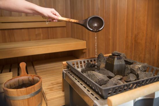 Hotel De Maretak: Sauna
