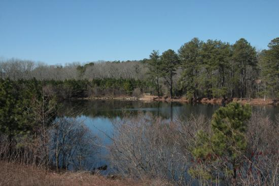 Holiday Inn Express & Suites Atlanta Airport West - Camp Creek: The small lake behind the hotel