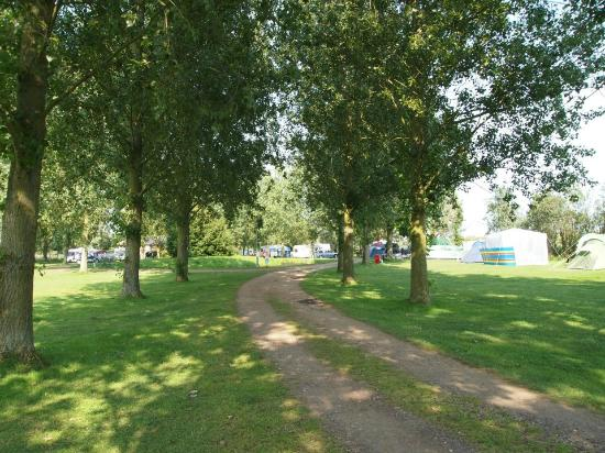 Reedham Ferry Touring Park