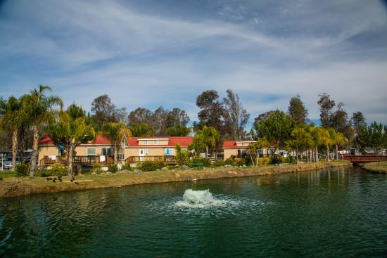 Camp View Picture Of Wilderness Lakes Rv Resort Menifee Tripadvisor