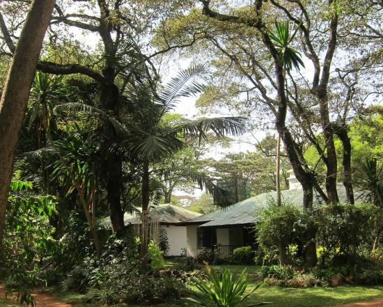 Karen Blixen Coffee Garden & Cottages: Grounds and view of Room #1
