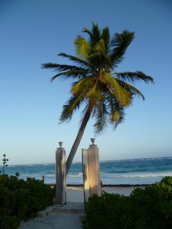 Playa Esperanza : Die Tür zum Paradies
