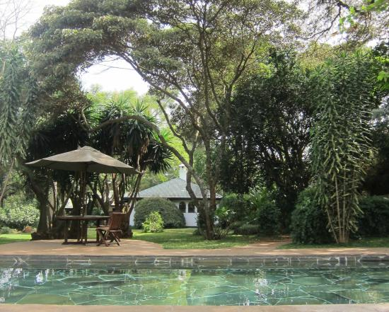 Karen Blixen Coffee Garden & Cottages: Pool
