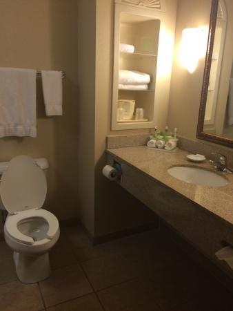 Bathroom Picture Of Holiday Inn Express Hotel Suites Dyersburg Dyersburg Tripadvisor