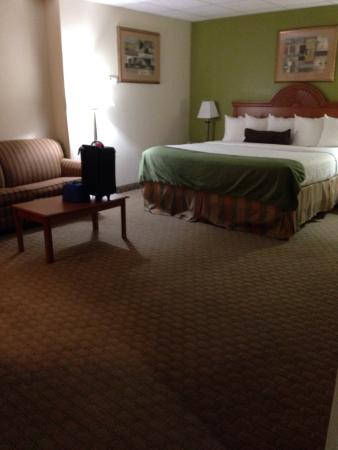 Best Western Plus Blue Angel Inn: HUGE room with King and love seat!