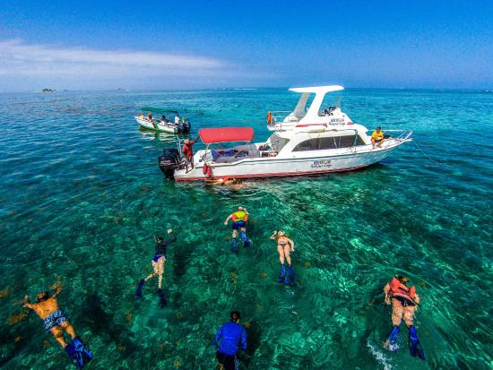 Best Belize Snorkeling Tours