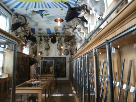 de magnifiques fusils picture of musee de la chasse et de la nature paris tripadvisor. Black Bedroom Furniture Sets. Home Design Ideas
