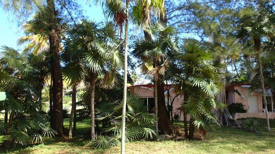 Villa Jibacoa Loma