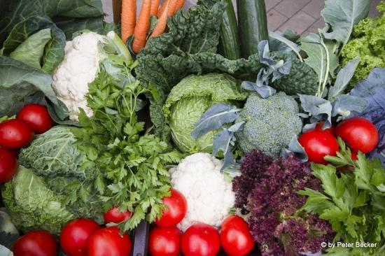 Werben, Alemania: Gemüse aus dem Spreewald
