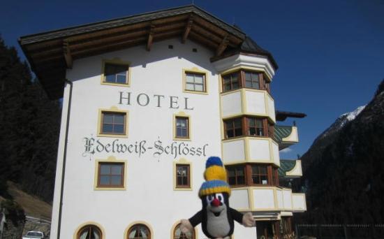 Hotel Edelweiss-Schloessl: Hotelansicht