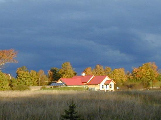 Consecon, Kanada: Redtail Vineyard