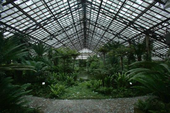 Garfield Park Conservatory: vista do jardim