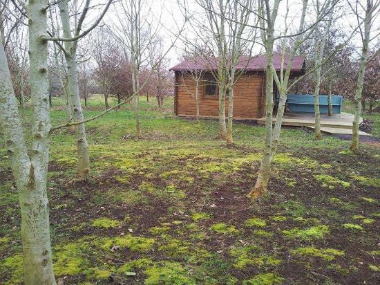 Wootton Park: breakfast cabin