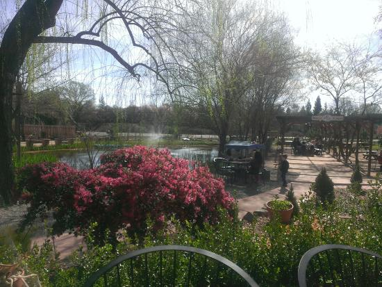 The Flower Farm Coffee House Picture