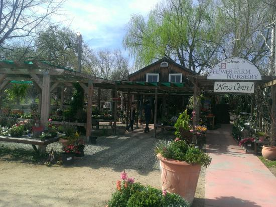写真The Flower Farm Coffee House枚