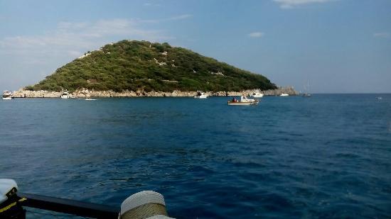 Путешествие в Турцию - Picture of Dolphinarium Kemer ...