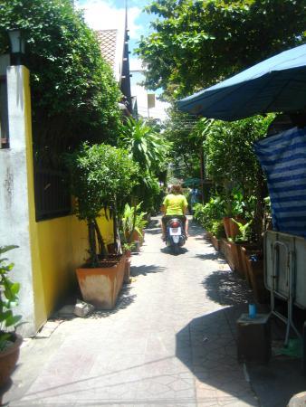 Lamphu Tree House: road outside