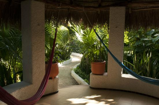 Amarte Hotel : hammocks and chairs provided with each palapa