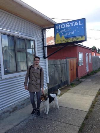 Hostal Aventura Austral: Dog punta arenano simpático