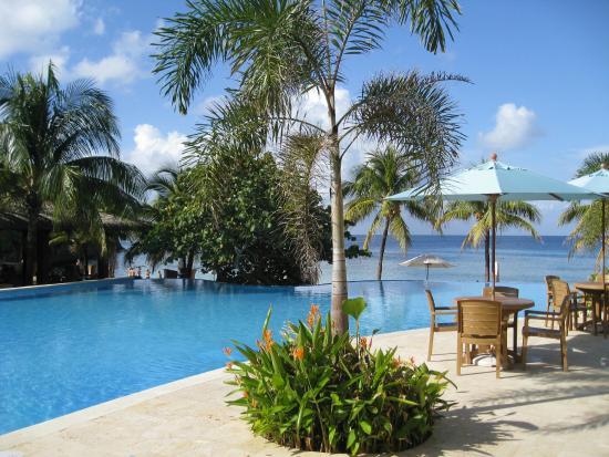 Grand Roatan Caribbean Resort: Infinity pool