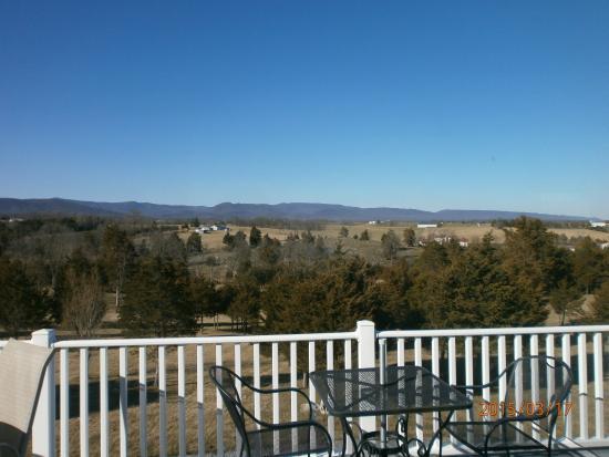Wolf Gap Vineyard: view