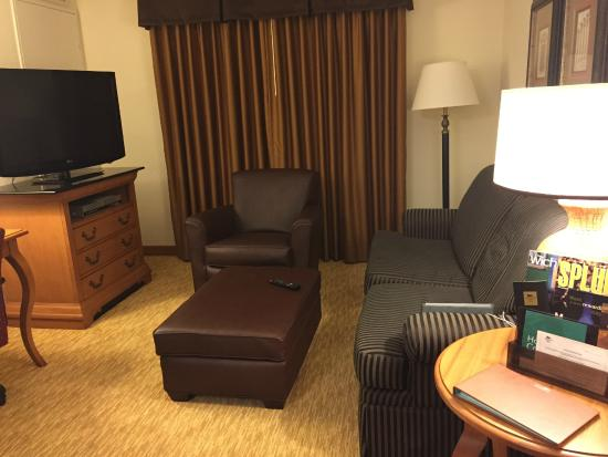 Homewood Suites by Hilton @ The Waterfront: Livingroom