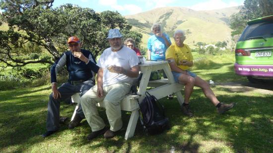 Coromandel Discovery Day Tours : Wandeling Coastal Walk