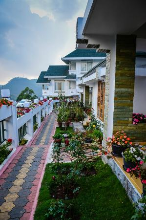 Elysium Garden Hill Resorts: the terrace and gardens, the flowers were lovely and well looked after