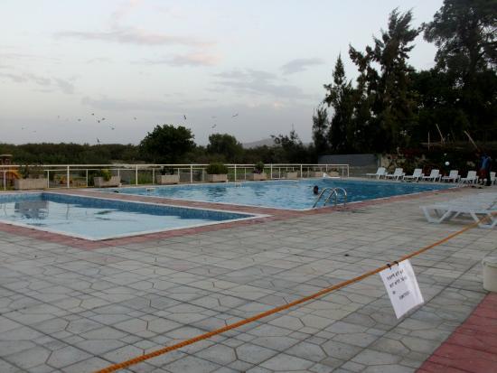 Clean swimming pool