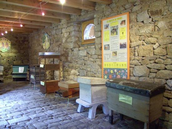 Le Faouet, France: Salle d'exposition ruches