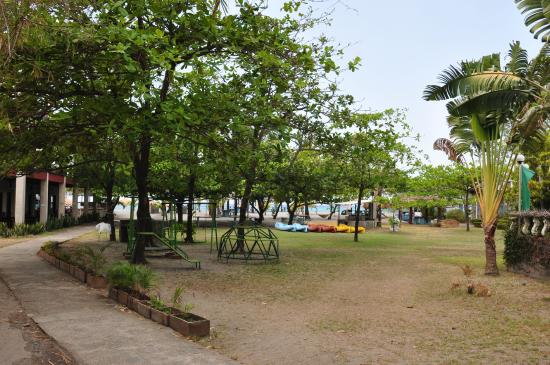 View from outside the Deluxe room Picture of Rama International