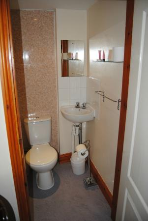 Old Palace Guest House : bathroom