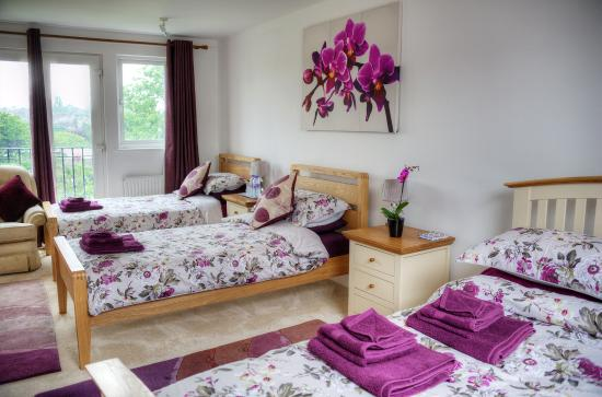 Photo of Bay Tree House Bed & Breakfast London