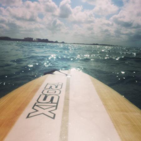 Siesta Paddle Sports: Paddleboarding!