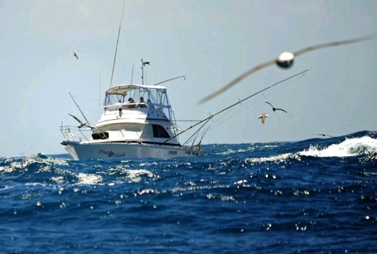 Smart Fishing Charters