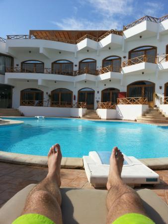 Dahab Divers South Sinai Hotel & Dive center: Basenik