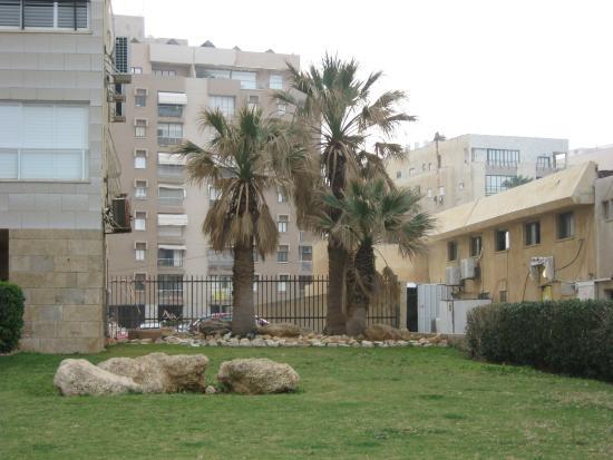 Galil Hotel: Вид местности, где расположен отель