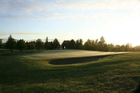 Minnedosa, Канада: Morning dew!