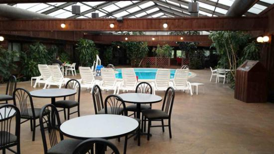 Wingfield Inn & Suites: Indoor Pool