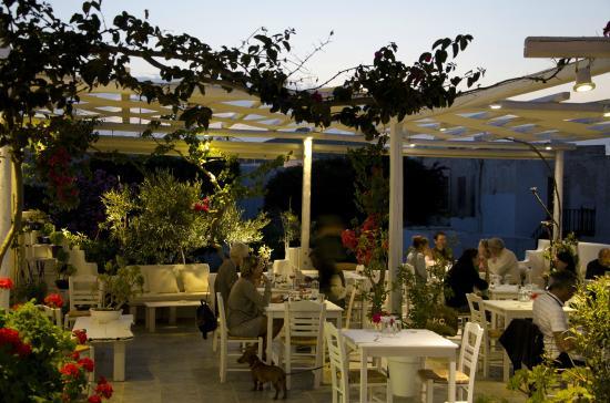 Open Garden Restaurant: night view - Picture of Open ...